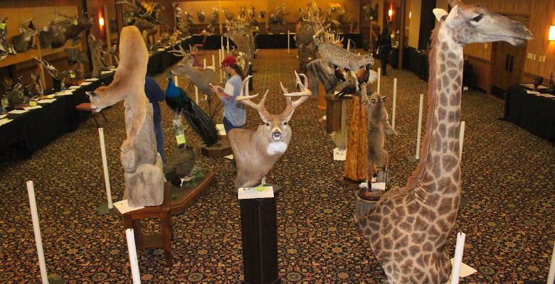 South Dakota Taxidermists Competition and Convention