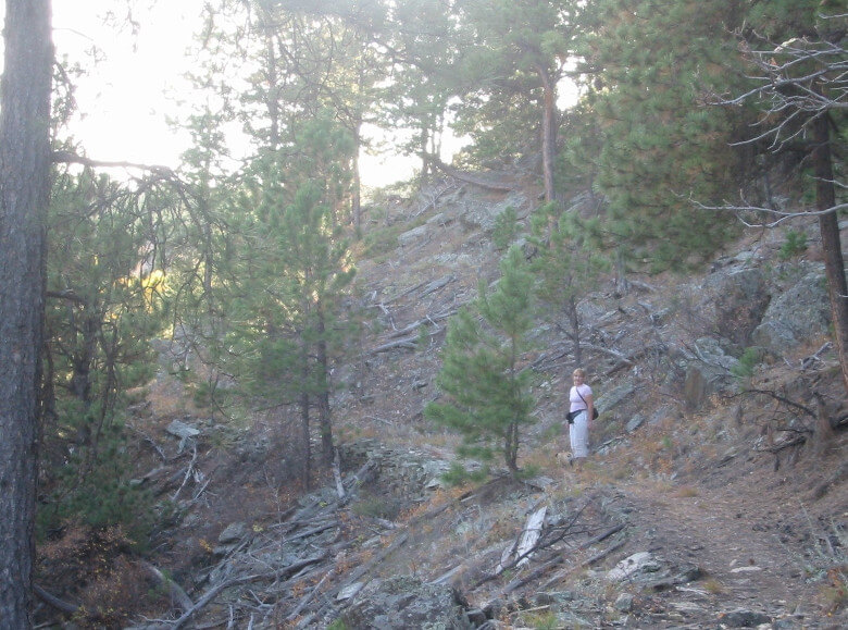Storm Mountain Steeper Trail